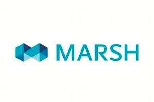 marsh.png